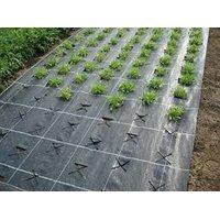 Агротекстиль agrojutex 100г/м2 на отрез