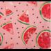 Матрас на шезлонг этель «арбузы», 55 × 190 см + 2 см