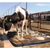 Дезинфекционный мат для копыт животных, толщина 6 см — 100 см х 200 см х 6 см