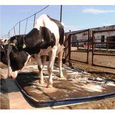 Дезинфекционный мат для копыт животных, толщина 4 см — 100 см х 200 см х 4 см