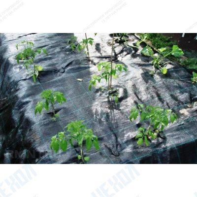 Агротекстиль agrojutex 100г/м2